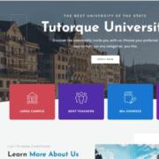 4 Tutorque Lifetime Deal Ltdhunt